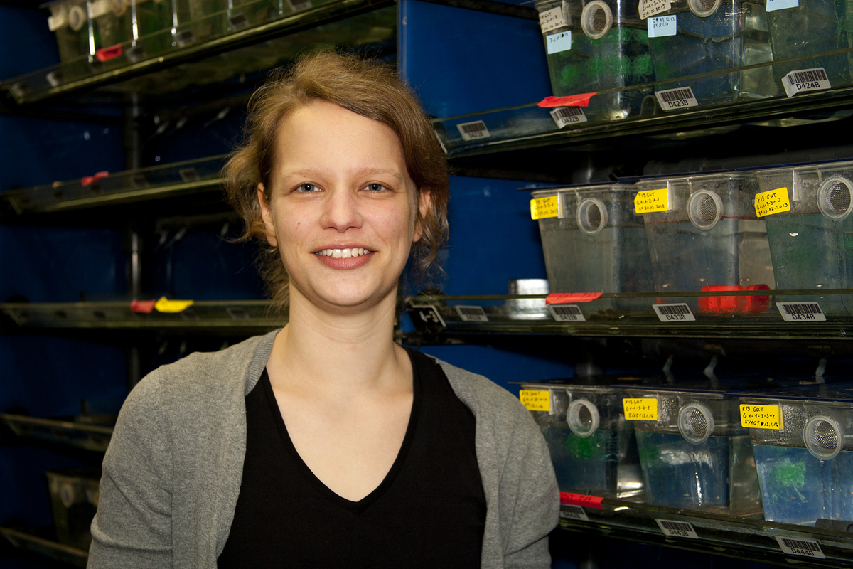 Verena Kottler in the guppy facility of the Max Planck Institute for Developmental Biology